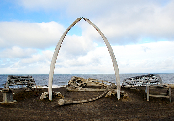 Whale Bone Arch at Barrow